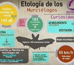 Biología.Murcielagos-Castilla-LaMancha