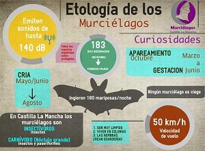 Biología.Murcielagos Castilla LaMancha_redu