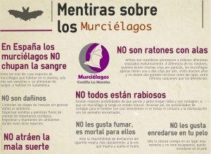 Mentiras sobre los murciélagos. Infografía por MCLM