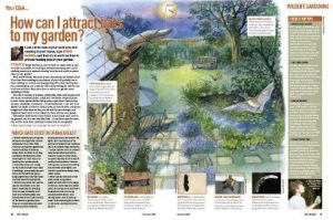 How to attract bats to your garden httpwww.discoverwildlife.com